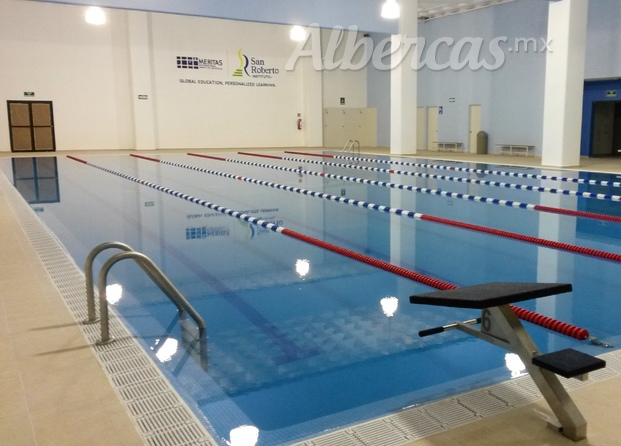 Im genes de albercas pool and services for Alberca semiolimpica